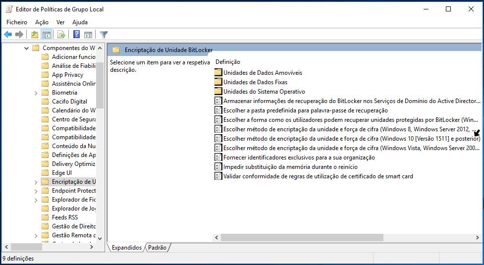 AES 256 Bitlocker